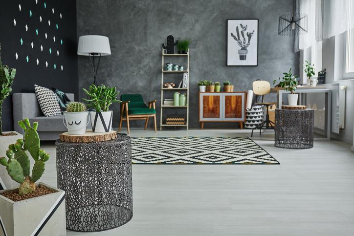 best indoor plants for apartments